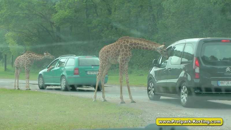 Serengeti Park dierentuin attracties duitsland report