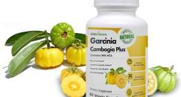 Garcinia Cambogia Plus – Losing weight without diet, is that possible?
