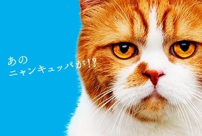 Y!mobileワンキュッパ割で1000円割引