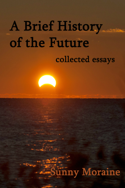 essay the future me See an example of a college application essay, with a point-by-point critique the past three years of my life have given me greater visions of my future.