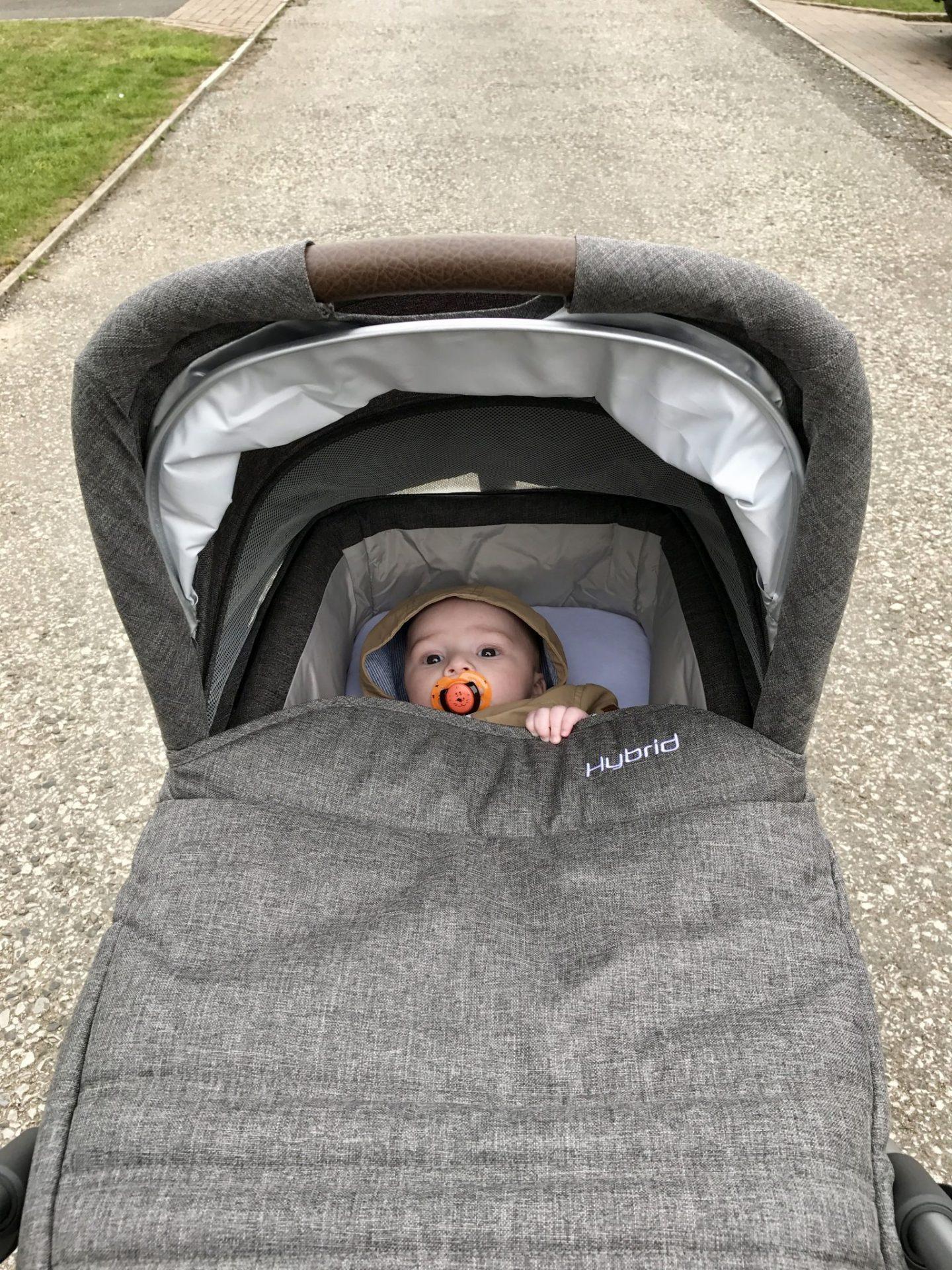 The Hybrid Stroller by BabyStyle - Pretty Big Butterflies