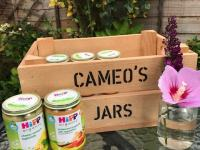 HiPPs Organic baby food review - Pretty Big Butterflies