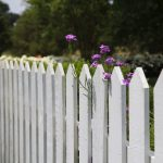 How to Make Privacy Fences as Lovely as They Are Functional