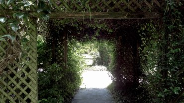 A small walkway into the botanical gardens