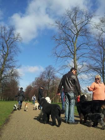 Kensington Garden 4