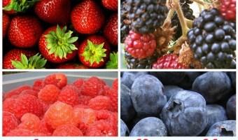 July Seasonal Fruits and Vegetables