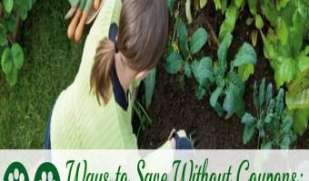 30 Ways to Save Without Coupons: Grow A Garden