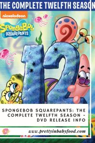 SpongeBob SquarePants The Complete Twelfth Season DVD Release Info