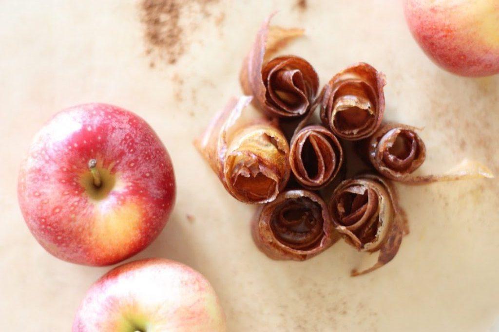 Homemade Apple Cinnamon Fruit Leather Recipe