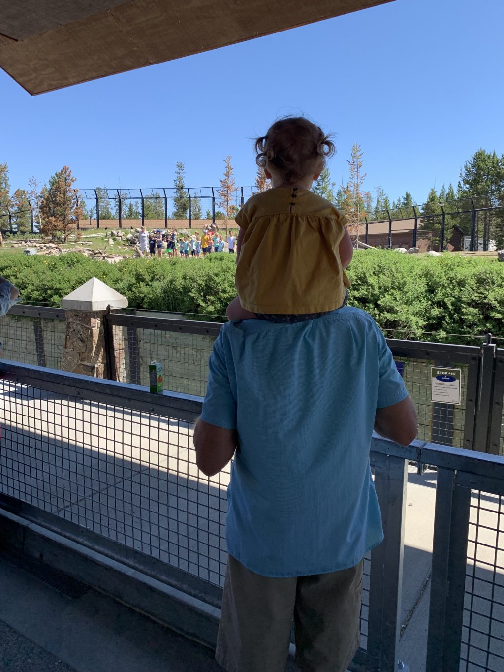 west yellowstone with kids 7