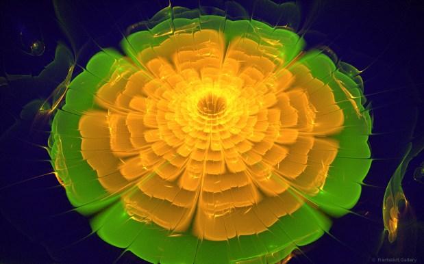 Orange Lily Pad by Alan Richmond