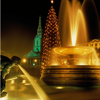 Trafalgar Square Christmas tree, London