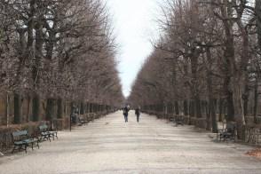 The park surrounding Schönbrunn