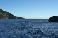 Towards the Tasman sea