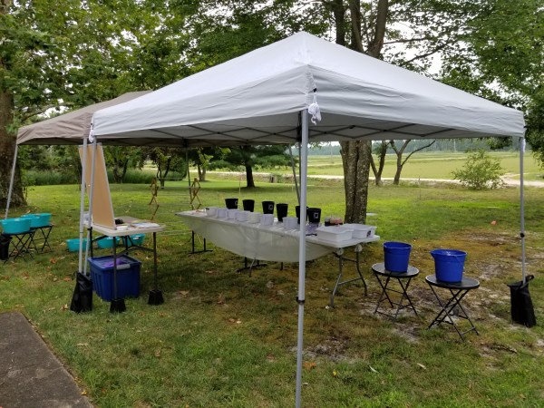 Dyeing party setup