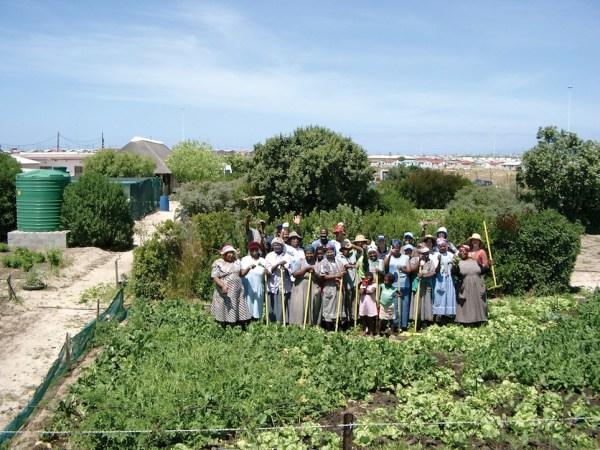 Harvest of Hope farmers