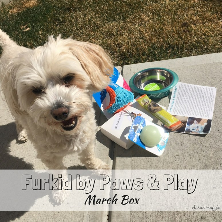 Paws & Play - March Box