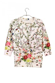 Sweat Roseanna - 250 Euros
