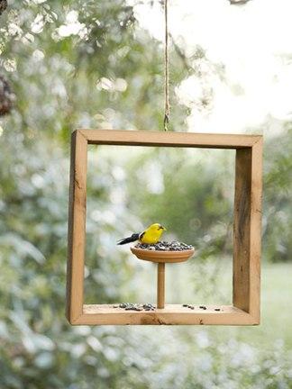In The Square Bird Feeder