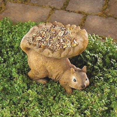 Squirrel Bird Buddy