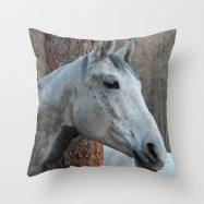 grey-horse-qn5-pillows