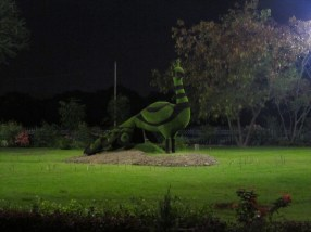 An interesting topiary peacock