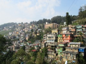Darjeeling as view from the botanical garden