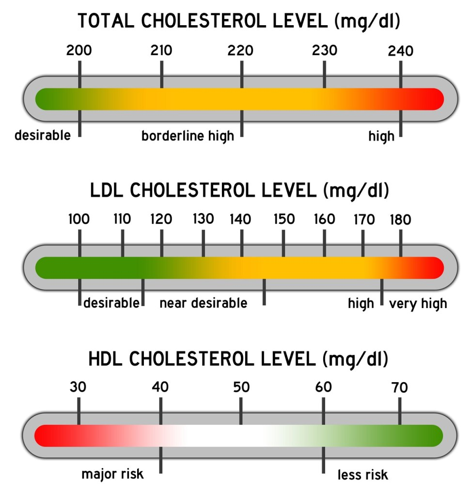 how to raise your hdl cholesterol naturally