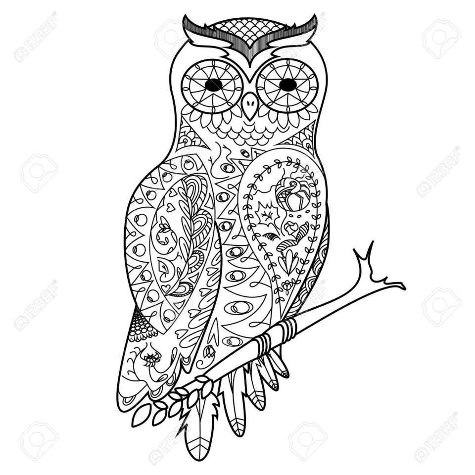 フクロウ鳥大人イラストの塗り絵。大人のための着色抗ストレス