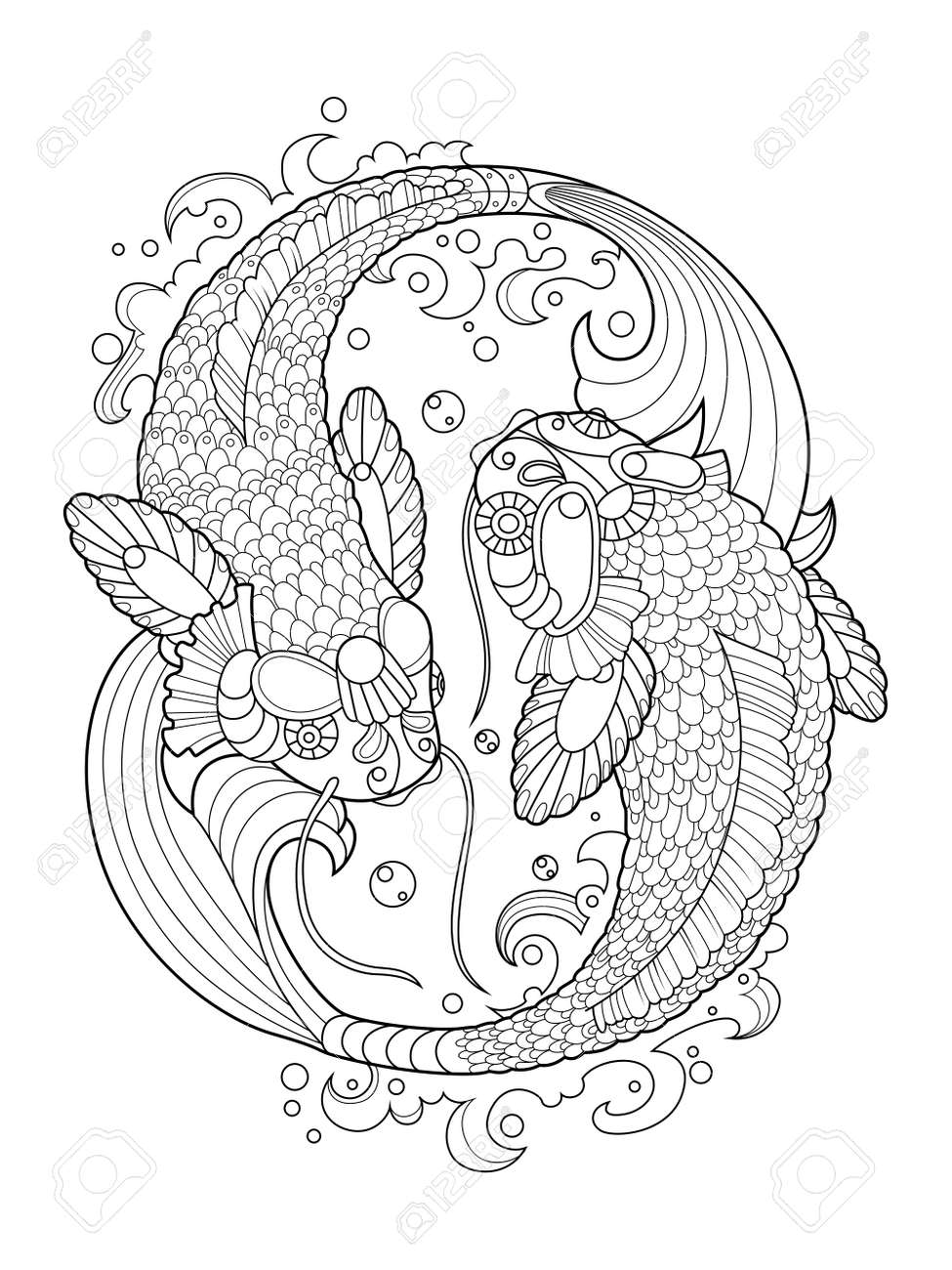 Koi Carp Fish Coloring Book For Adults Vector Illustration Anti Stress Royalty Free Cliparts Vectors And Stock Illustration Image 64821737