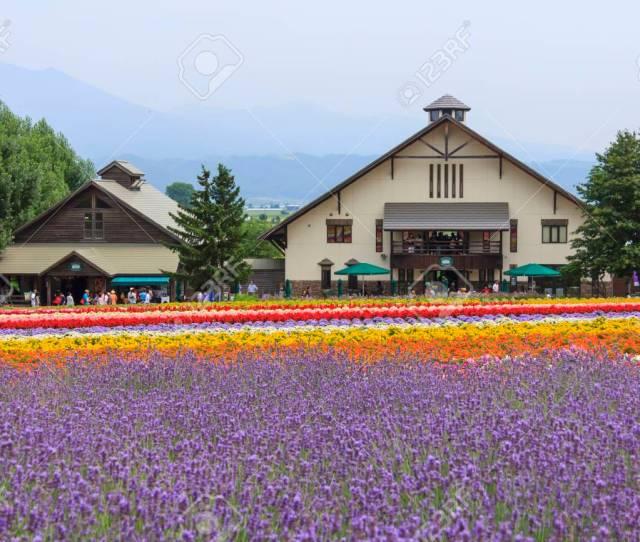 Furano Hokkaido Japan July 30 2015 Colorful Flower Fields With Glass
