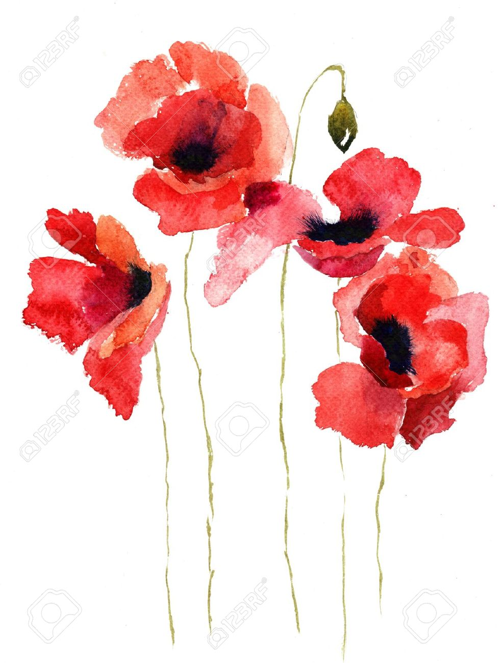 Stylized Poppy Flowers Illustration Stock Photo  Picture And Royalty     Stylized Poppy flowers illustration