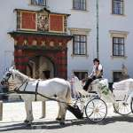 Vienna Austria July 11 2015 White Horse Drawn Carriage In Stock Photo Picture And Royalty Free Image Image 90354196