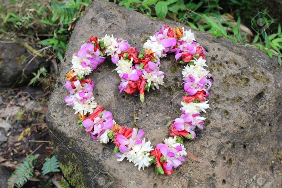 Heart Shaped Wreath Made Of Fresh Flowers   Hawaiian Lei Stock Photo     Heart shaped wreath made of fresh flowers   Hawaiian Lei Stock Photo    72952918