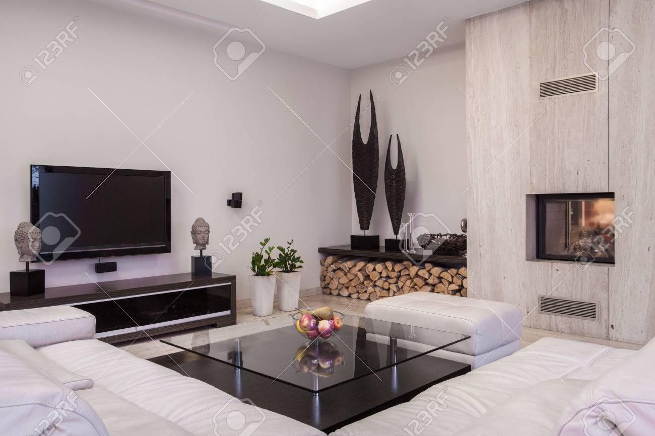 salon avec television a ecran plasma et d une cheminee