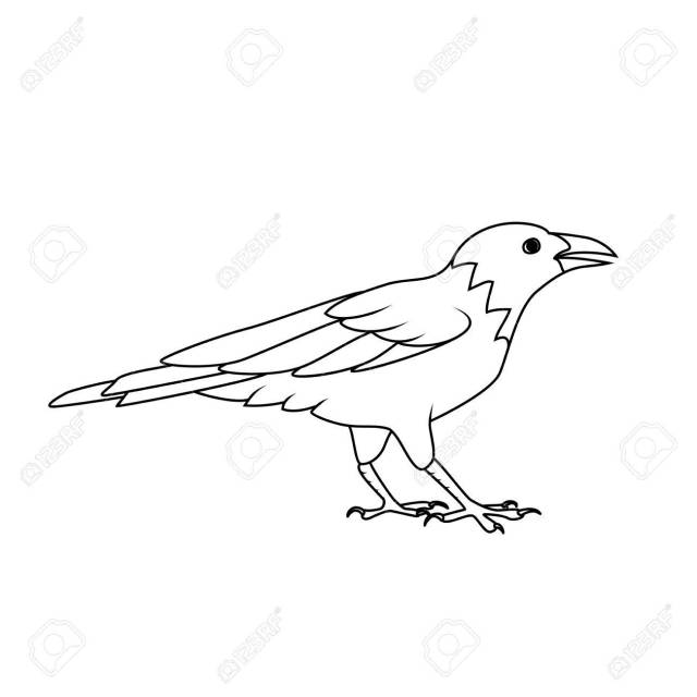 Coloring Book: Crow Or Raven Royalty Free Cliparts, Vectors, And