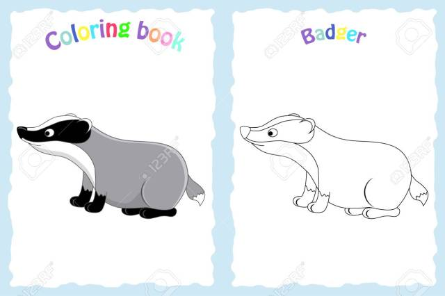 Coloring Book Page For Preschool Children With Colorful Badger And