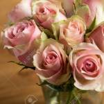 Bouquet Of Cream Pink And Pink Color Cezanne Roses Stock Photo Picture And Royalty Free Image Image 106754549