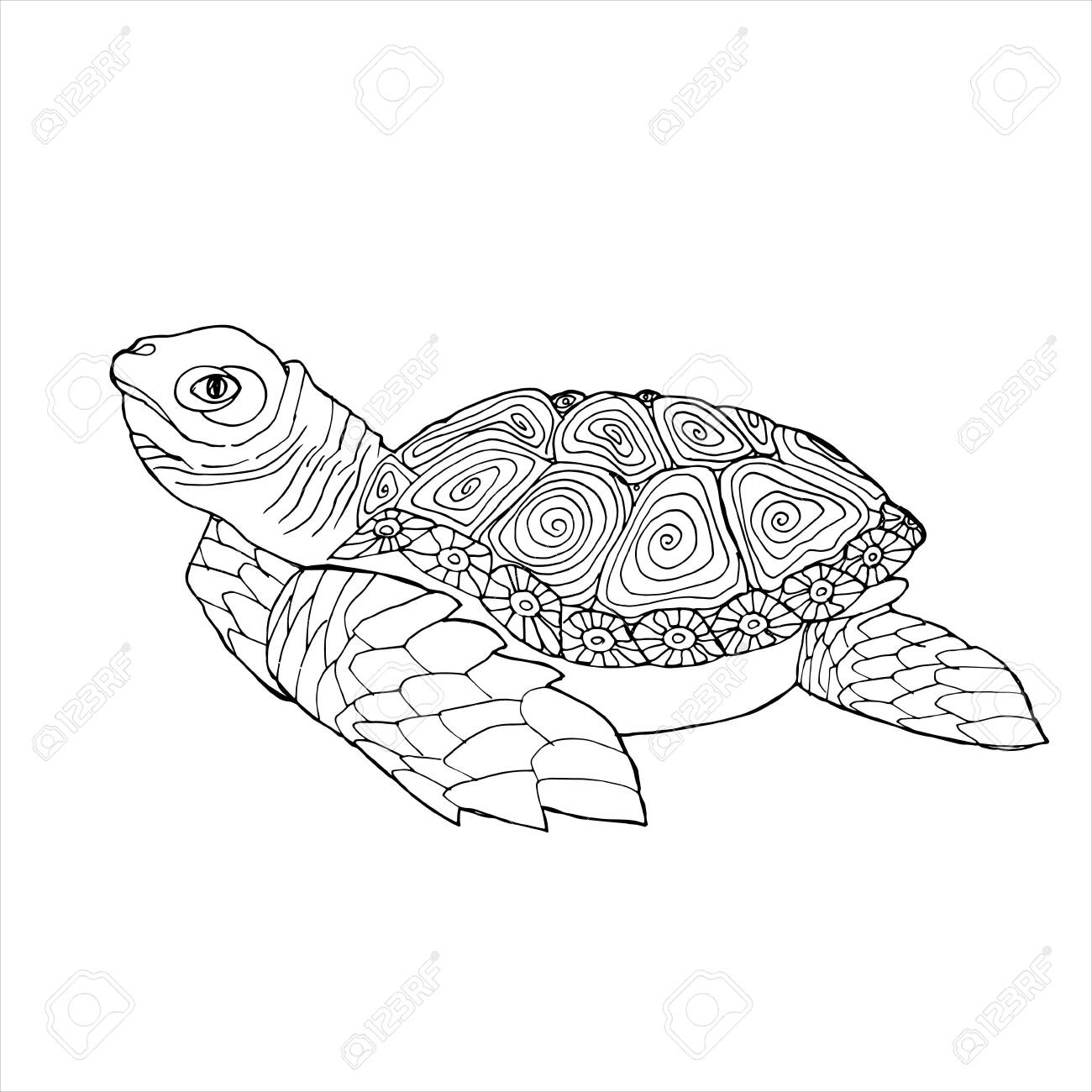 Sea Turtle Coloring Book Hand Drawing Coloring Book For Children Royalty Free Cliparts Vectors And Stock Illustration Image 143775296