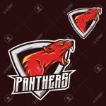 Panthers Logo Jaguar Puma Panther Esport Gaming Mascot Logo Royalty Free Cliparts Vectors And Stock Illustration Image 124368019