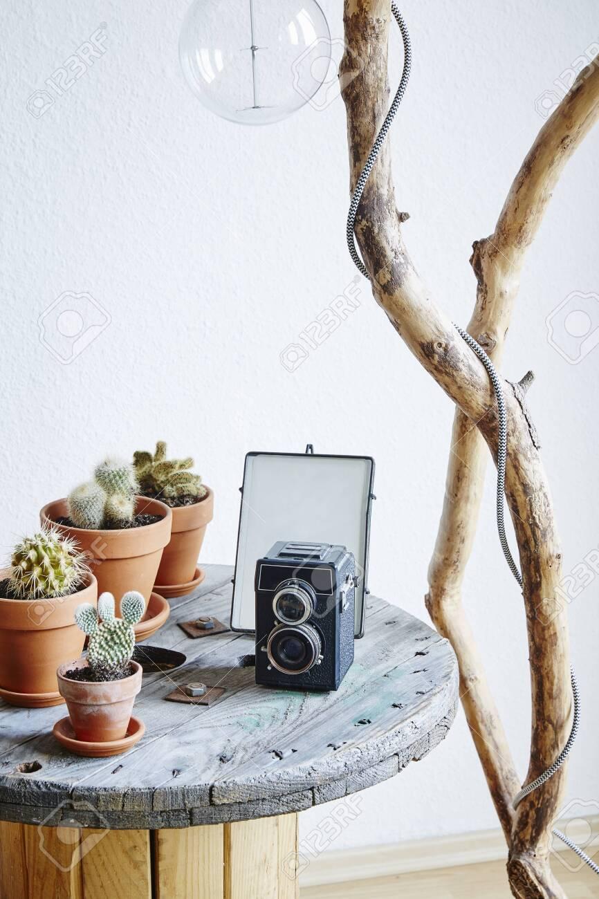 https www 123rf com photo 128894885 coffee table decoration cacti and vintage camera on cable drum upcycling ideas html