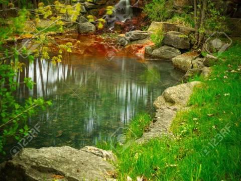 oase teich stock photo