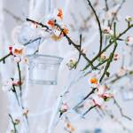 Wedding Decor White And Green Tree Branch With Blossoming Buds Stock Photo Picture And Royalty Free Image Image 86248184