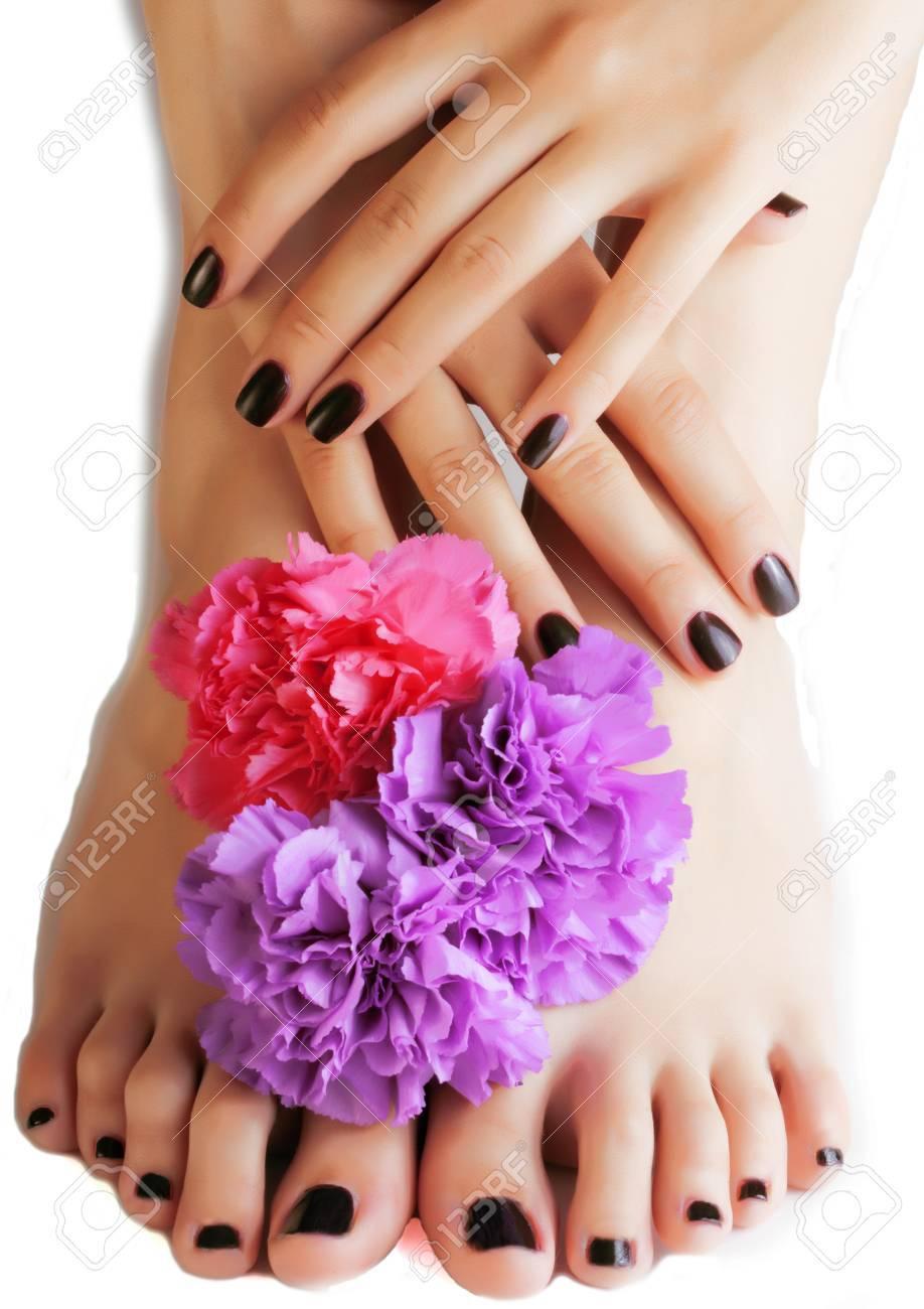 manikure pedikure mit blume nahaufnahme isoliert auf weiss perfekte form hande spa salon moderne dunkle mani pedi