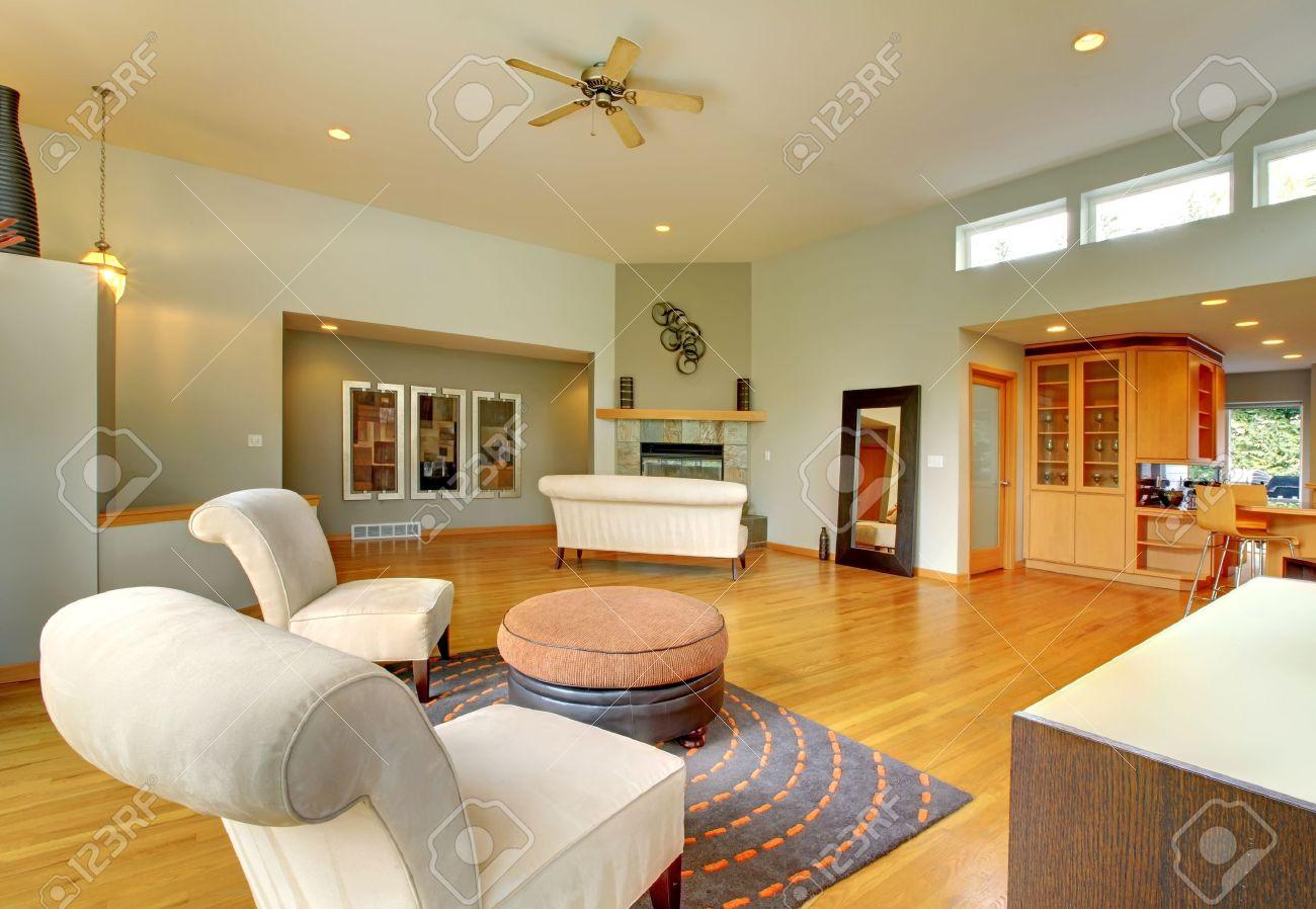 fantastique maison interieur moderne salon immense salle vert clair avec des meubles modernes