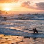 Man Horse Riding On Sunset Beach Person With Horse At Seaside Stock Photo Picture And Royalty Free Image Image 95971073