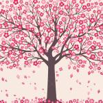 Cherry Blossom Background With Pink Sakura Tree On White For Royalty Free Cliparts Vectors And Stock Illustration Image 113563202