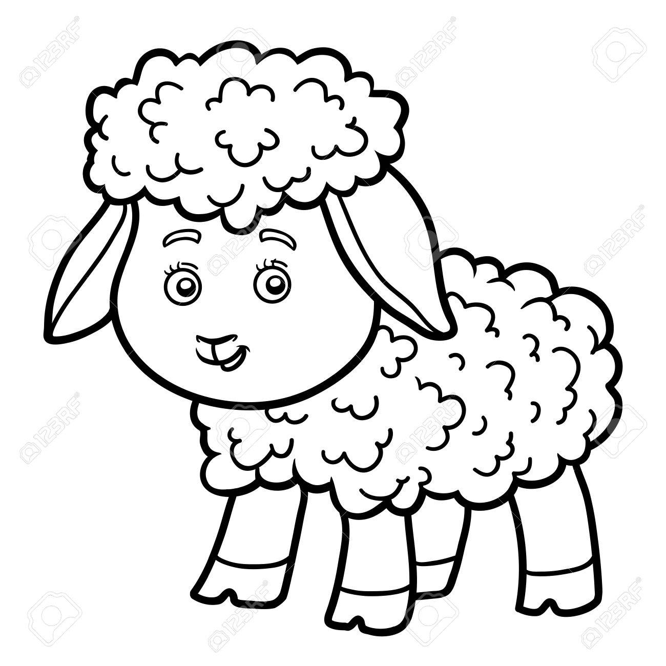Coloring Book For Chilren Coloring Page With Little Sheep Royalty
