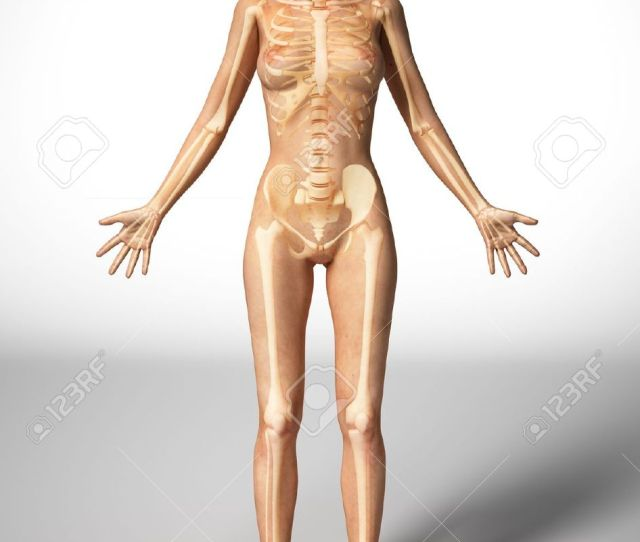 Naked Woman Standing On Floor With Bone Skeleton Superimposed Stock Photo