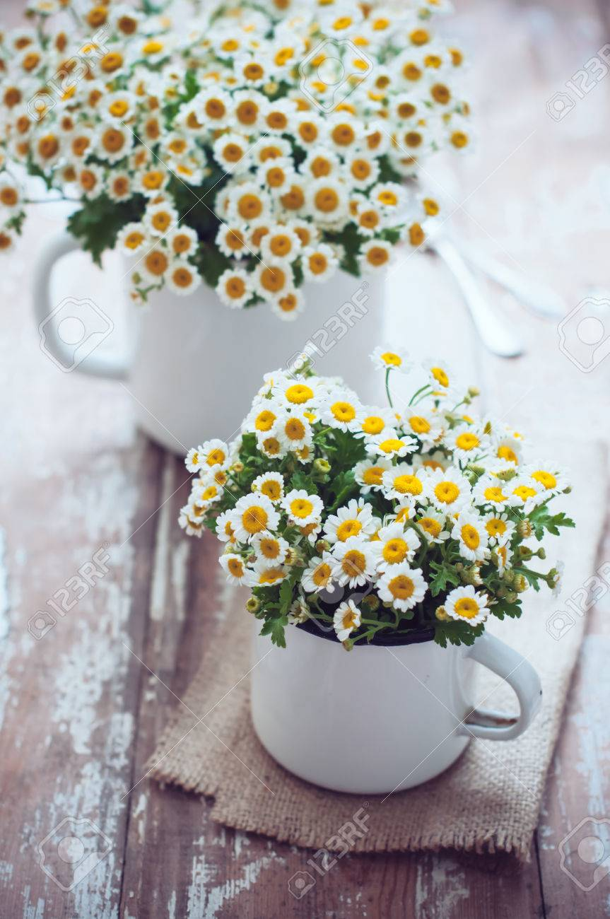 Two Vintage Enamel Mugs With Chamomile Flowers On Wooden Background